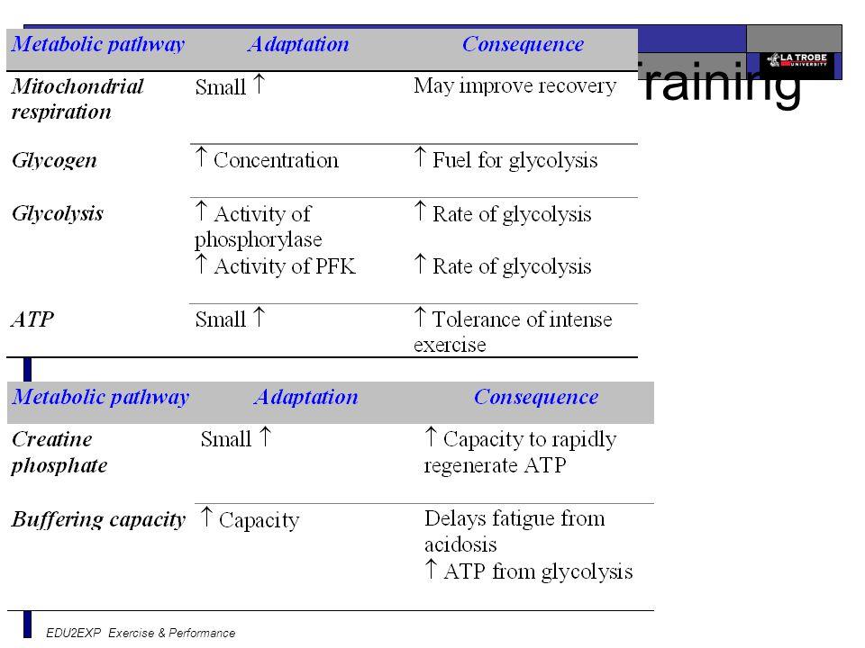 EDU2EXP Exercise & Performance Chronic Adaptations to Training