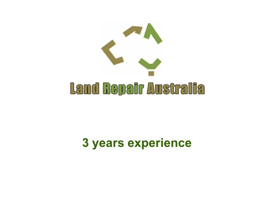 3 years experience