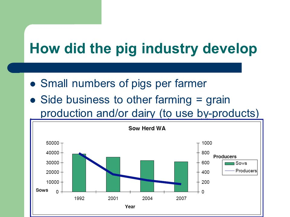 How did the pig industry develop Small numbers of pigs per farmer Side business to other farming = grain production and/or dairy (to use by-products)