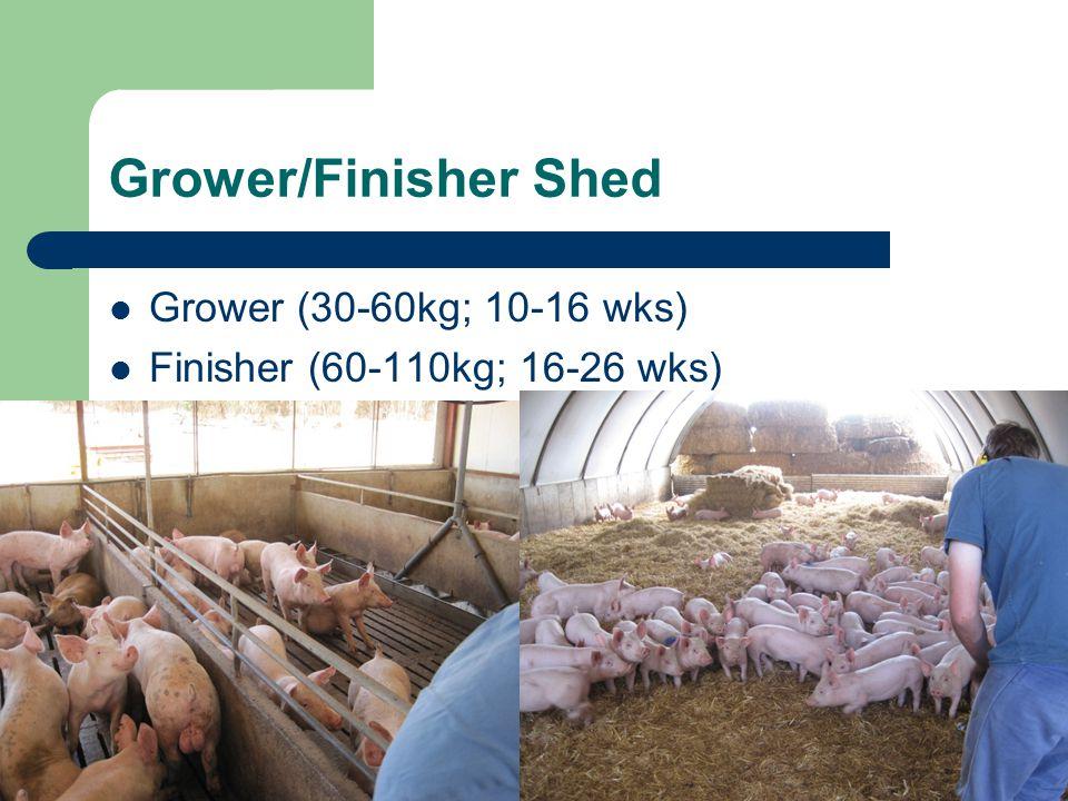 Grower/Finisher Shed Grower (30-60kg; 10-16 wks) Finisher (60-110kg; 16-26 wks)