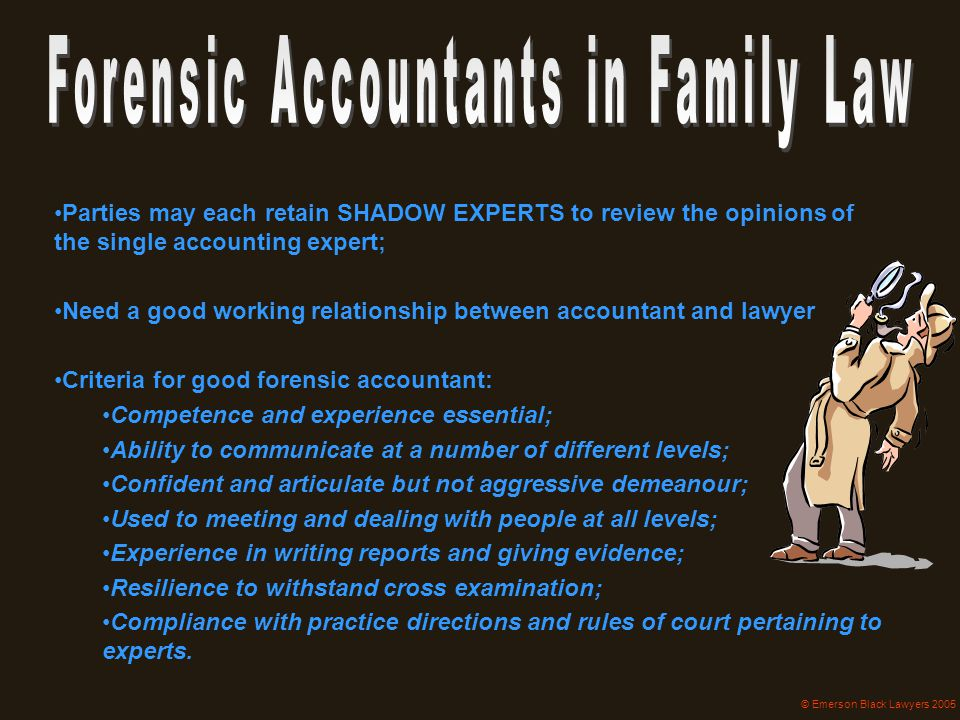 Parties may each retain SHADOW EXPERTS to review the opinions of the single accounting expert; Need a good working relationship between accountant and
