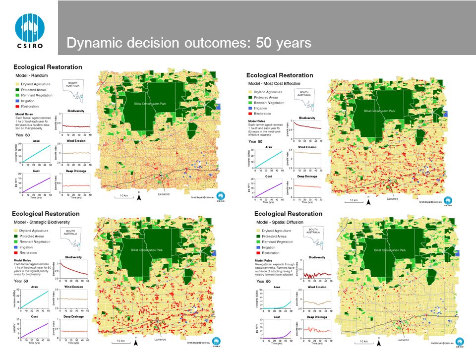 Dynamic decision outcomes: 50 years