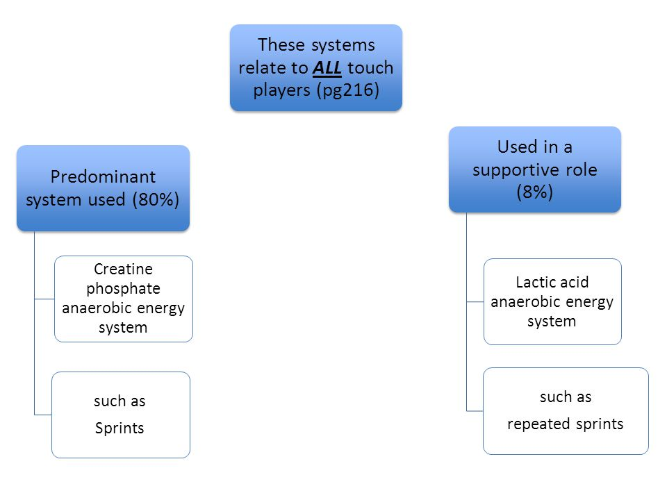 Predominant system used (80%) Creatine phosphate anaerobic energy system such as Sprints These systems relate to ALL touch players (pg216) Used in a supportive role (8%) Lactic acid anaerobic energy system such as repeated sprints
