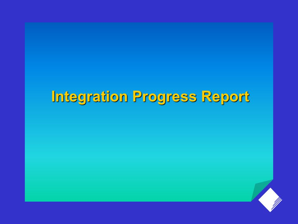 Integration Progress Report