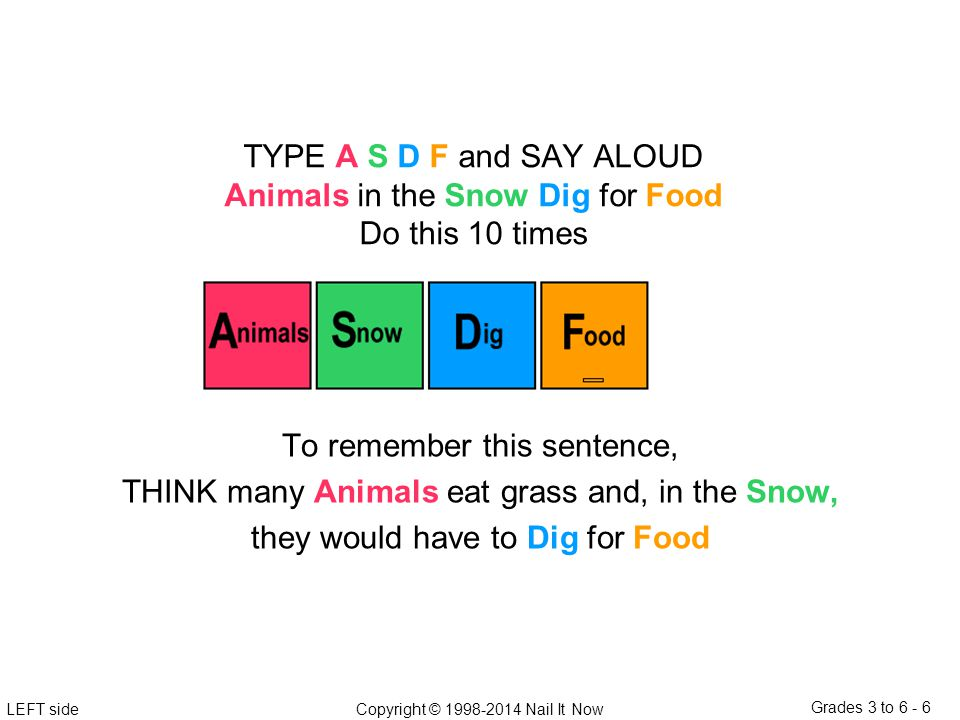 LEFT sideCopyright © 1998-2014 Nail It Now Grades 3 to 6 - 6 To remember this sentence, THINK many Animals eat grass and, in the Snow, they would have to Dig for Food TYPE A S D F and SAY ALOUD Animals in the Snow Dig for Food Do this 10 times