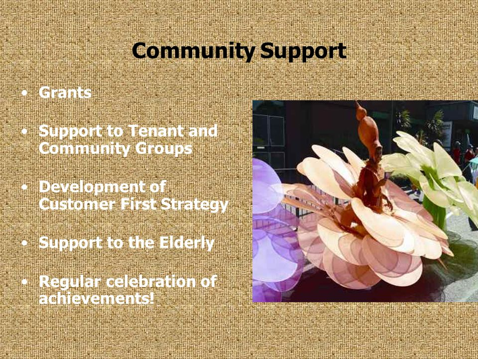 Community Support Grants Support to Tenant and Community Groups Development of Customer First Strategy Support to the Elderly Regular celebration of achievements!