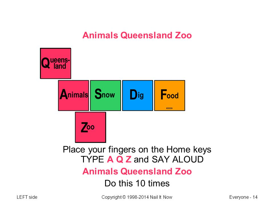 LEFT sideCopyright © 1998-2014 Nail It NowEveryone - 14 Animals Queensland Zoo Place your fingers on the Home keys TYPE A Q Z and SAY ALOUD Animals Queensland Zoo Do this 10 times