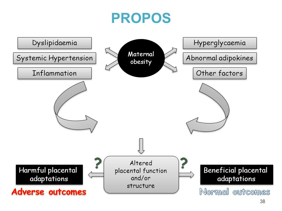 PROPOS 38 Hyperglycaemia Dyslipidaemia Inflammation Maternal obesity Abnormal adipokines Beneficial placental adaptations Beneficial placental adaptations Harmful placental adaptations Harmful placental adaptations Altered placental function and/or structure Altered placental function and/or structure Systemic Hypertension Other factors