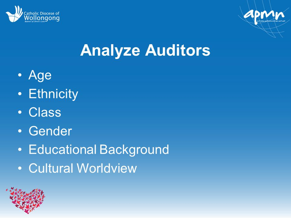 Analyze Auditors Age Ethnicity Class Gender Educational Background Cultural Worldview