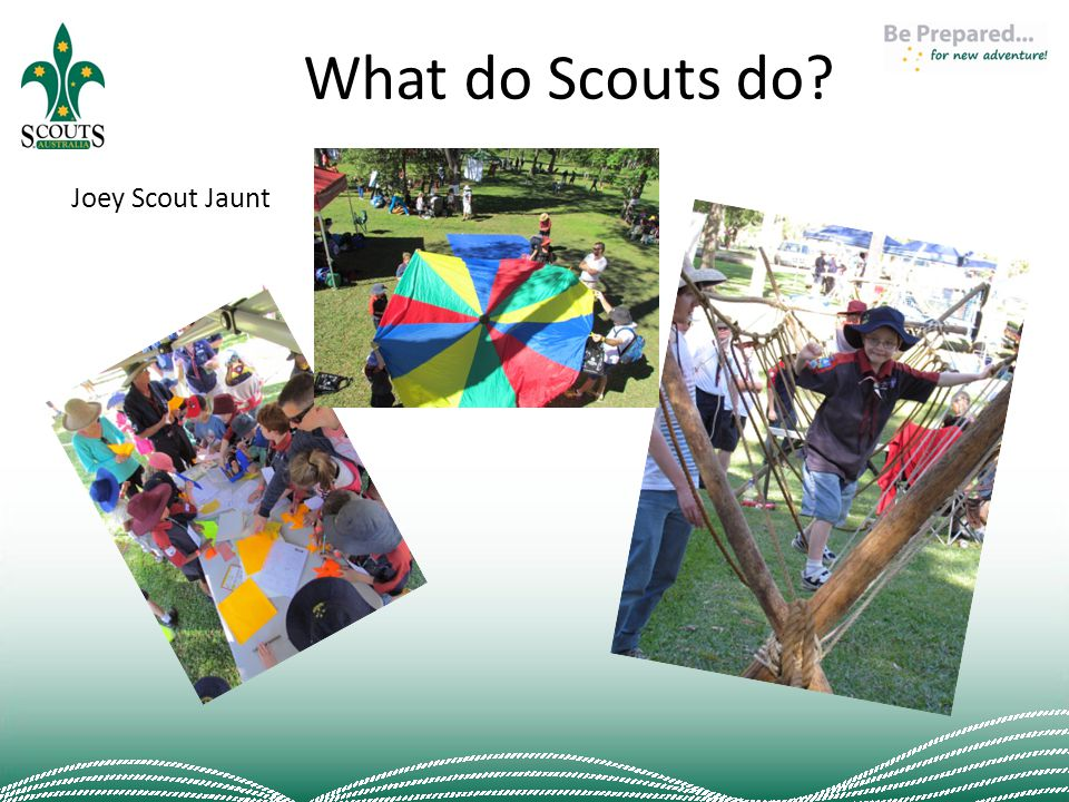 What do Scouts do? Joey Scout Jaunt