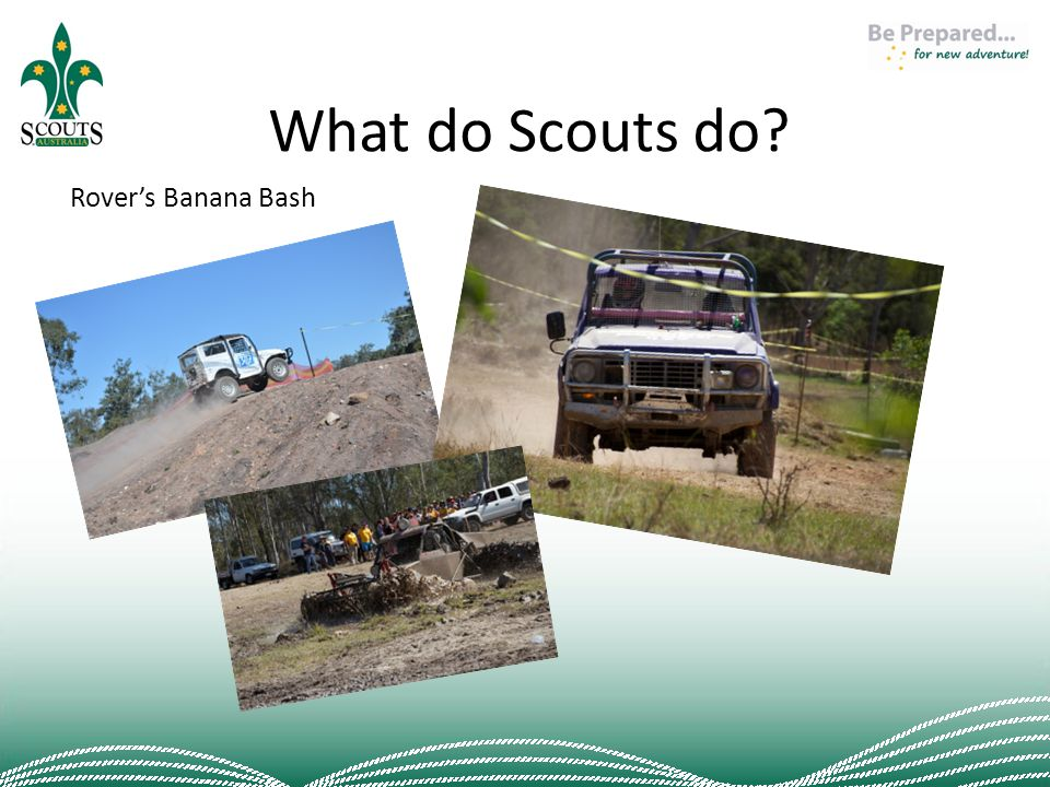 What do Scouts do? Rover's Banana Bash