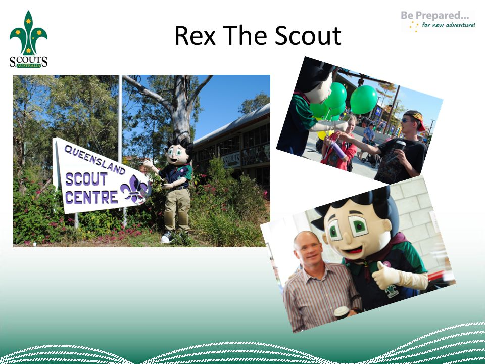 Rex The Scout