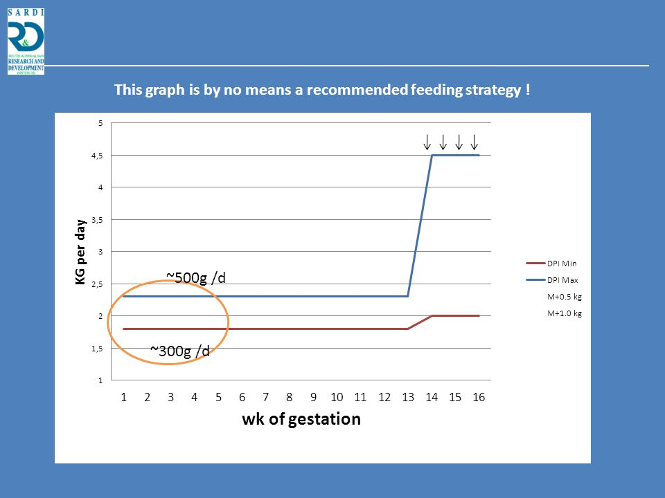 Nutrition of gilts in early pregnancy and reproductive performance Pieter Langendijk Rebecca Athorn Tai-Yuan Chen Emmy Bouwman