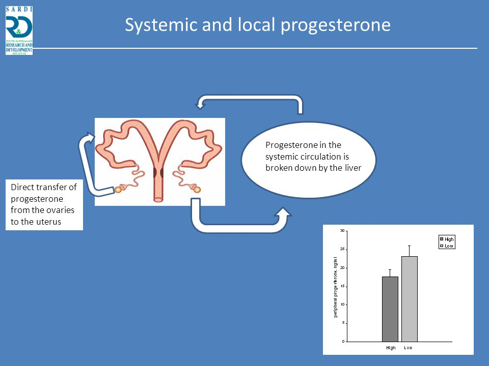 Progesterone in the systemic circulation is broken down by the liver Systemic and local progesterone
