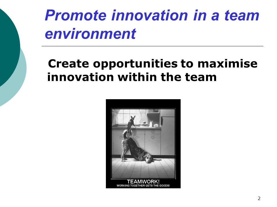 Promote innovation in a team environment Create opportunities to maximise innovation within the team 2