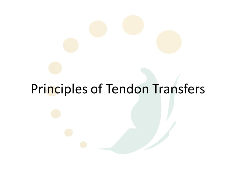 What is a tendon transfer.