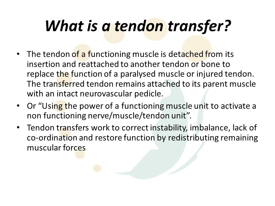 Indications Paralysed muscle – Nerve injury – peripheral or brachial plexus – High cervical quadriplegia (needs some input to brachial plexus/hand) – Neurological disease – Nerve repair with early transfer as internal splint Injured (ruptured or avulsed) tendon or muscle – Considerations Graft vs.