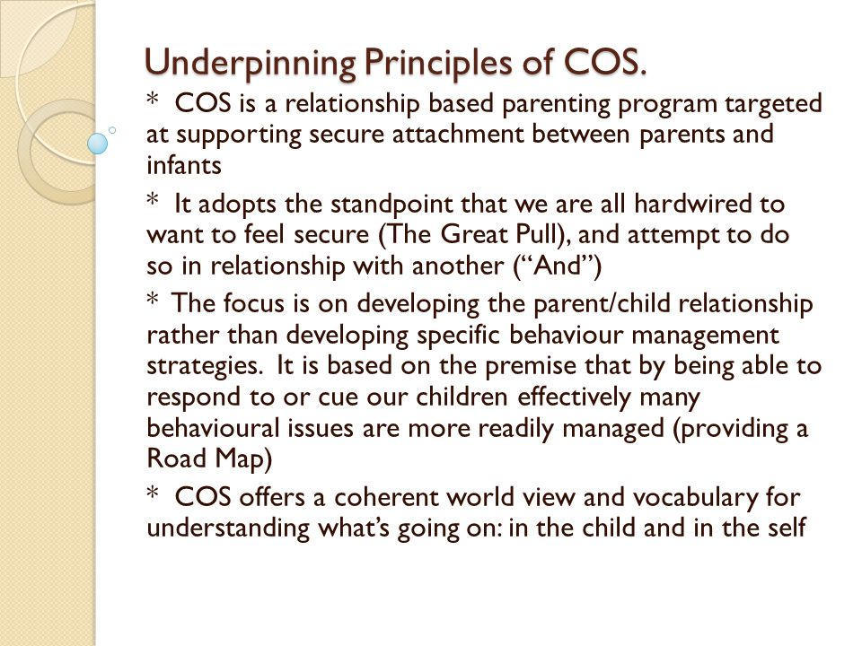 Underpinning Principles of COS.