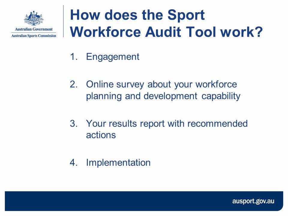 How does the Sport Workforce Audit Tool work.