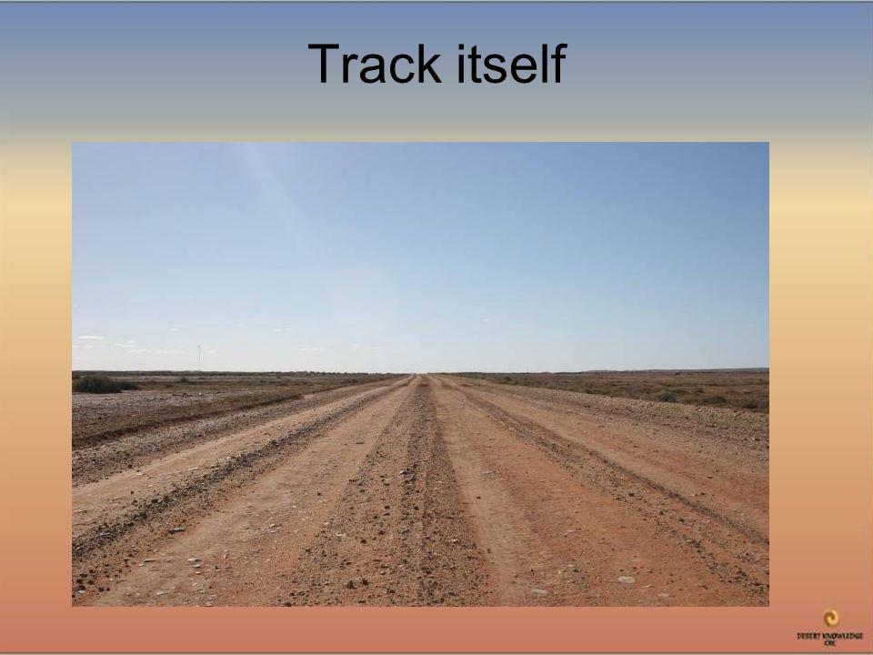 Track itself