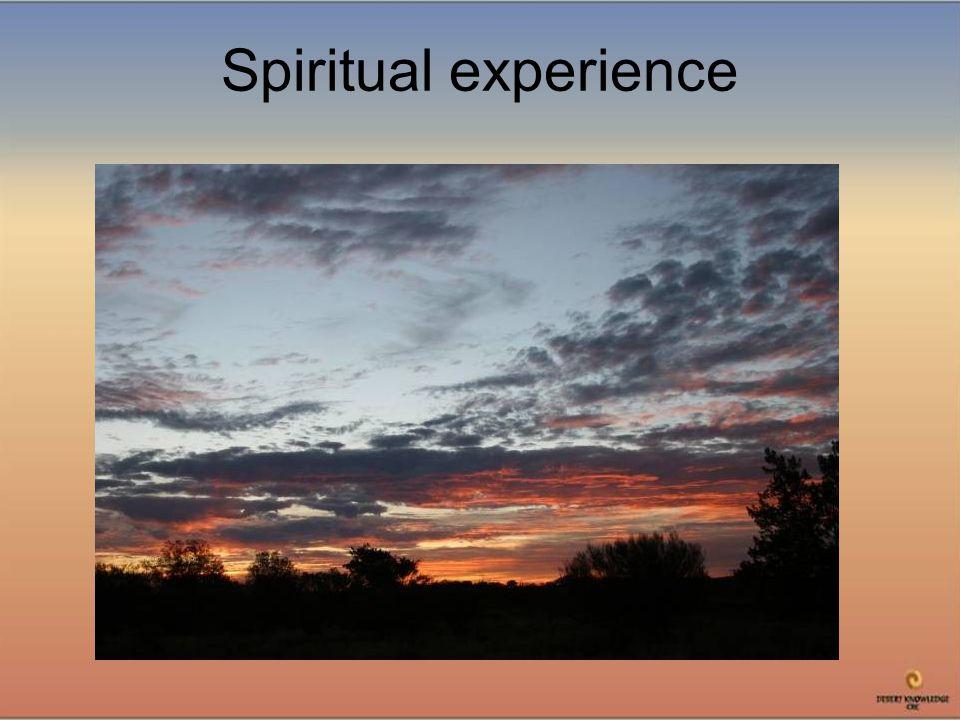 Spiritual experience