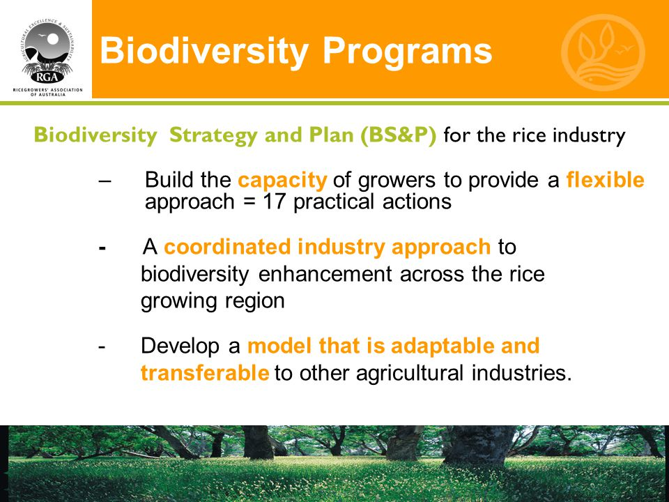 Biodiversity Programs Biodiversity Strategy and Plan (BS&P) for the rice industry –Build the capacity of growers to provide a flexible approach = 17 practical actions - A coordinated industry approach to biodiversity enhancement across the rice growing region - Develop a model that is adaptable and transferable to other agricultural industries.