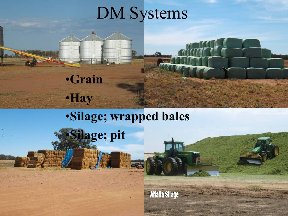 Study topics of Dry Matter (DM) Storage methods of hay, silage pit, silage baled & wrapped Cost of production of these methods Suitable crops Quality