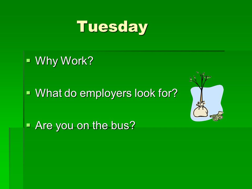 Tuesday Tuesday  Why Work  What do employers look for  Are you on the bus