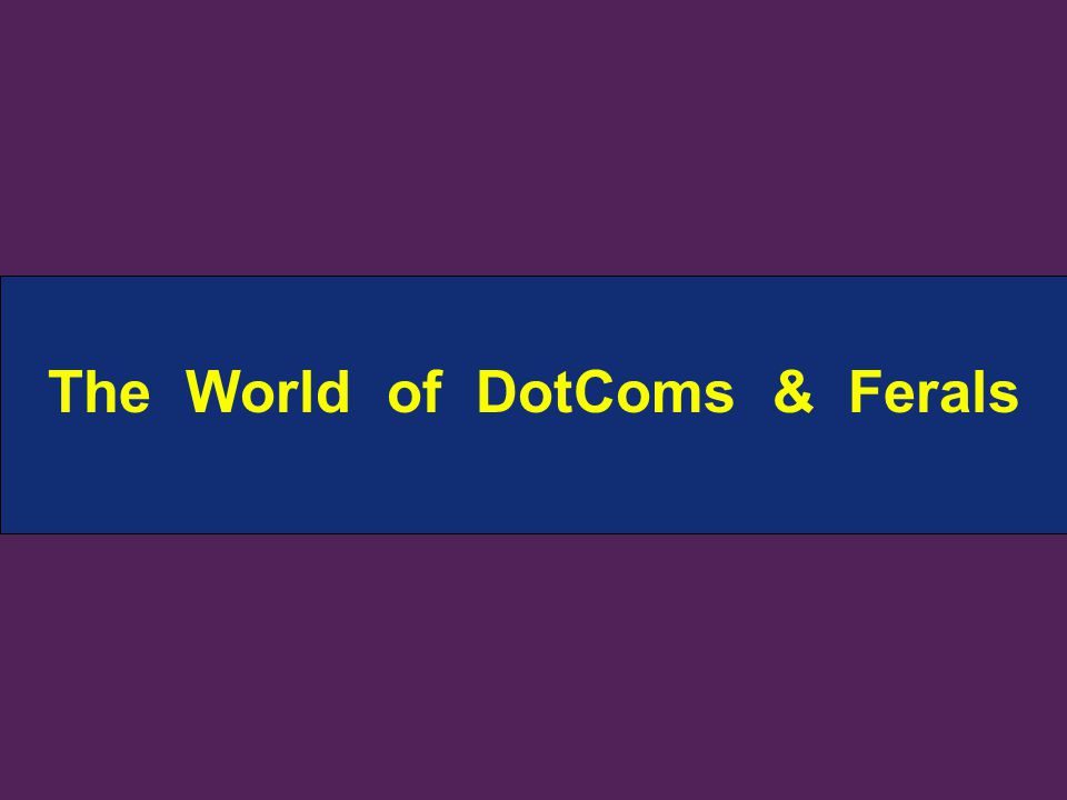 The World of DotComs & Ferals
