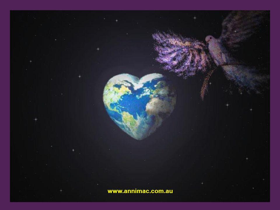 www.annimac.com.au