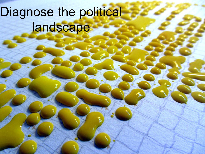 Diagnose the political landscape