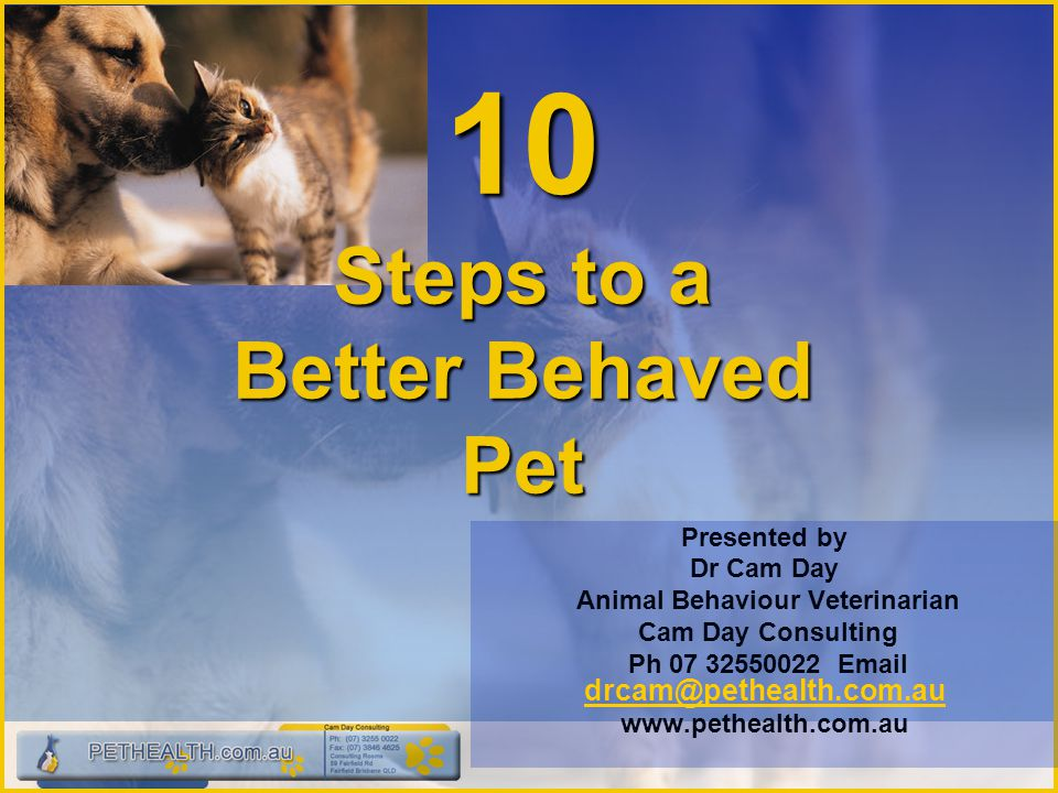 10 Steps to a Better Behaved Pet Presented by Dr Cam Day Animal Behaviour Veterinarian Cam Day Consulting Ph 07 32550022 Email drcam@pethealth.com.au