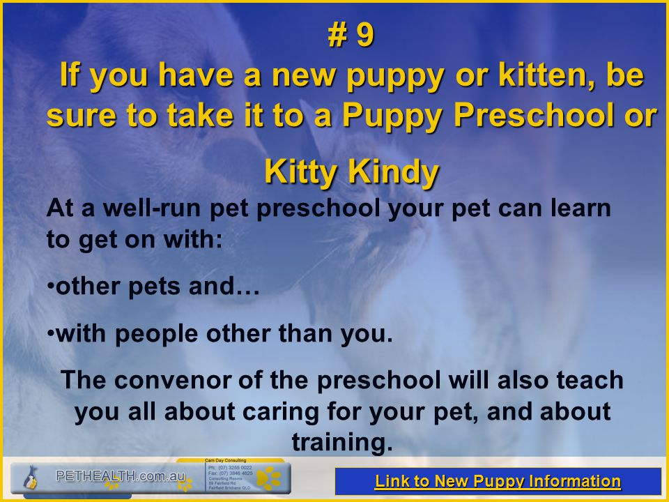 # 9 If you have a new puppy or kitten, be sure to take it to a Puppy Preschool or Kitty Kindy At a well-run pet preschool your pet can learn to get on