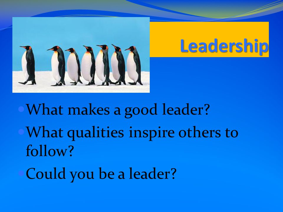 Leadership What makes a good leader. What qualities inspire others to follow.