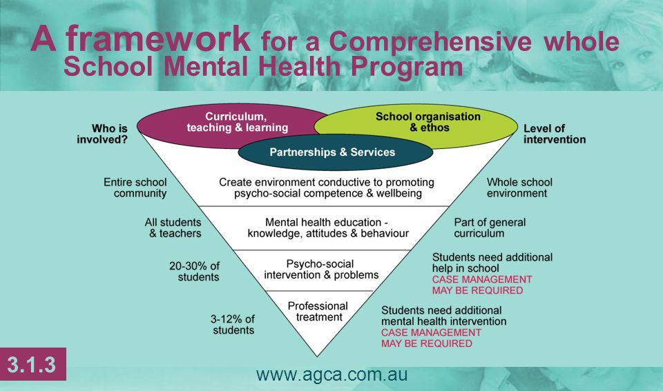  Membership of the SCM team will vary according to the support needs of student population & individual students  Ideally, the SCM team involves a school administrator; a student services/pastoral care staff member; the school psychologist/ counsellor & other allied heath services www.agca.com.au Establishing a school-based system 3.1.14