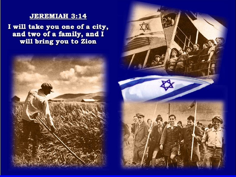 Israel the Nation Isa 43:10 Ye are my witnesses, saith the LORD, and my servant whom I have chosen: that ye may know and believe me, and understand that I am he: before me there was no God formed, neither shall there be after me.
