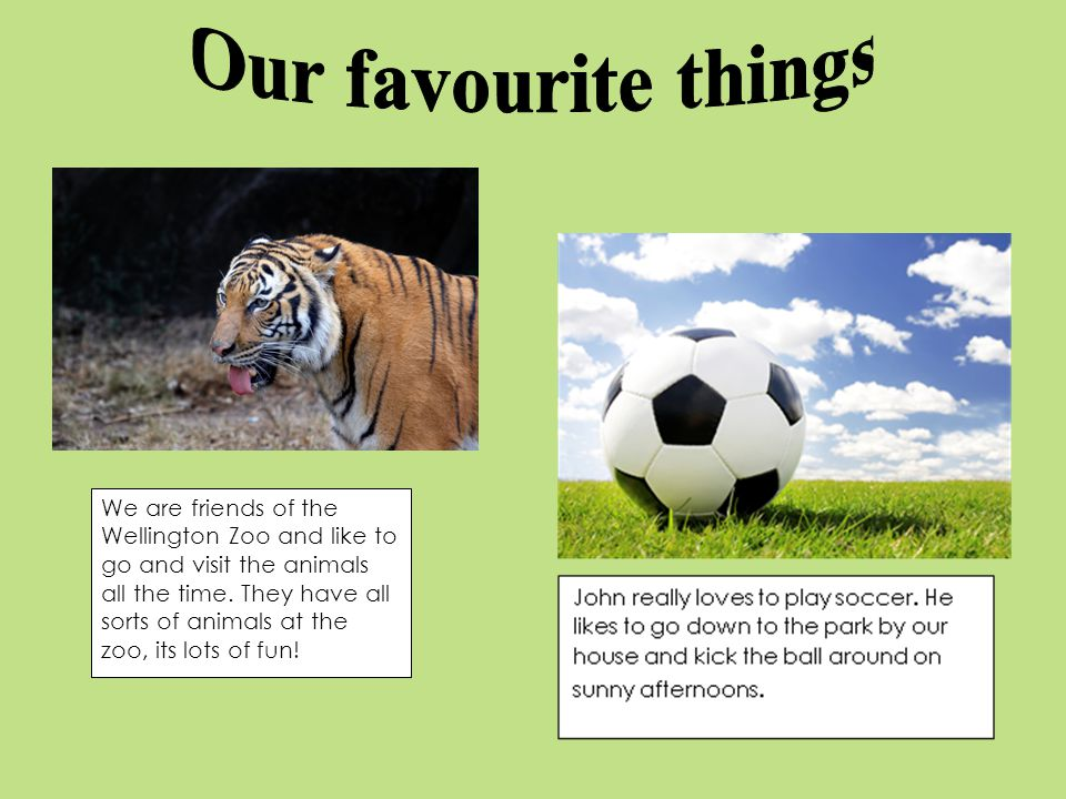 We are friends of the Wellington Zoo and like to go and visit the animals all the time.