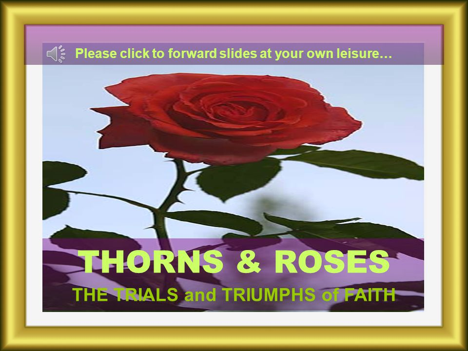 THORNS & ROSES THE TRIALS and TRIUMPHS of FAITH Please click to forward slides at your own leisure…