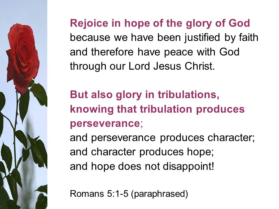 Rejoice in hope of the glory of God because we have been justified by faith and therefore have peace with God through our Lord Jesus Christ.