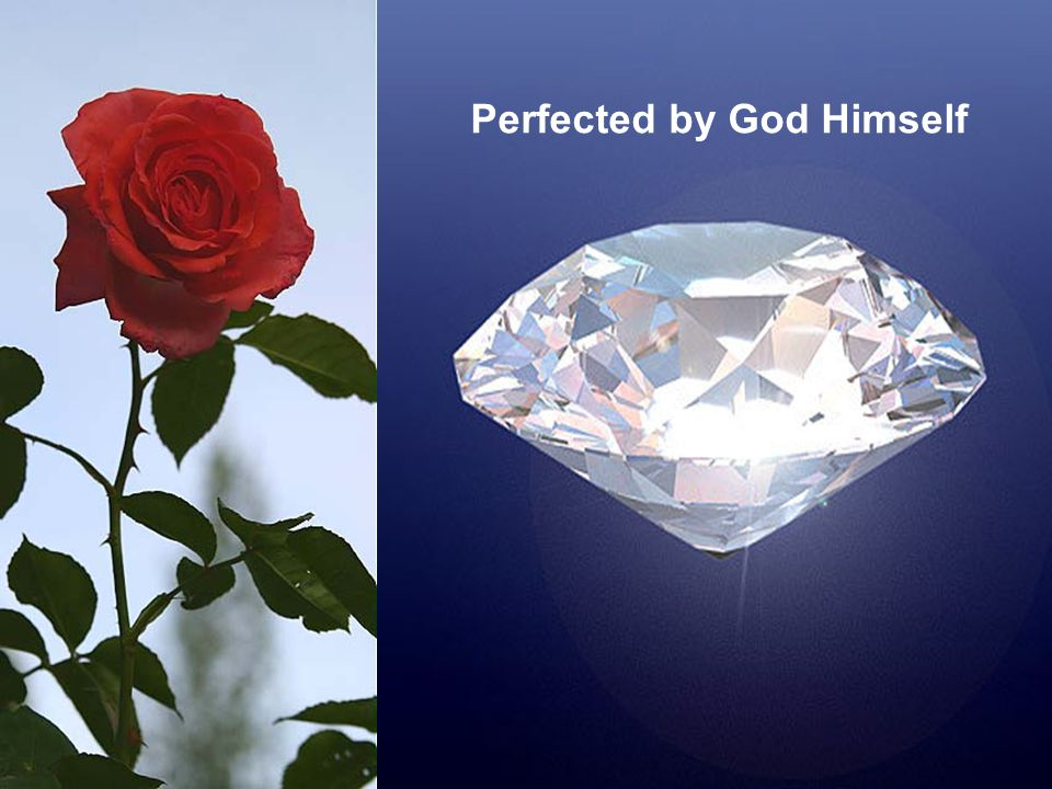 Perfected by God Himself