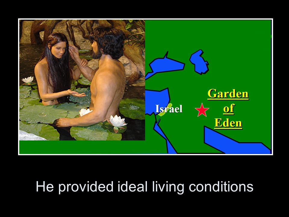 He provided ideal living conditions