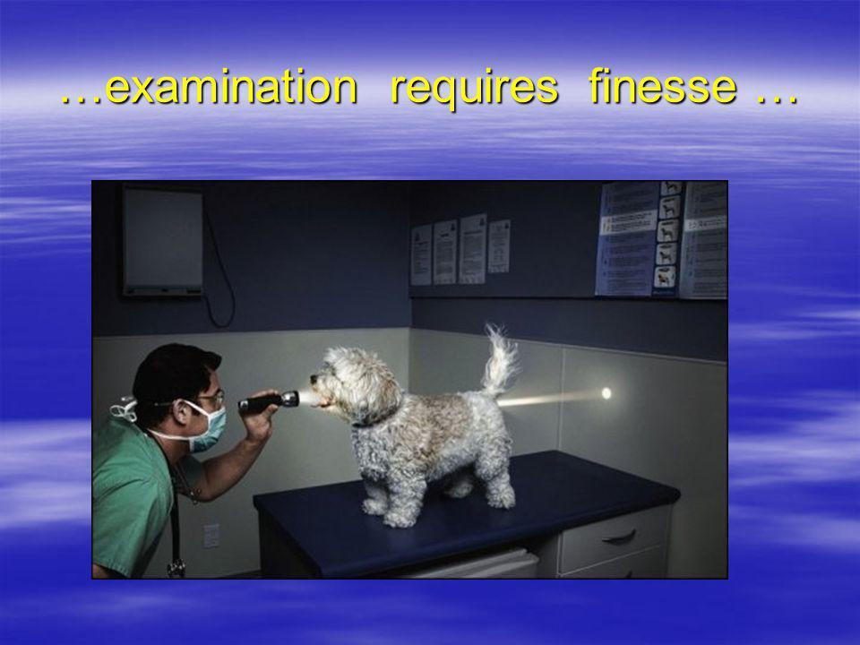 …examination requires finesse …