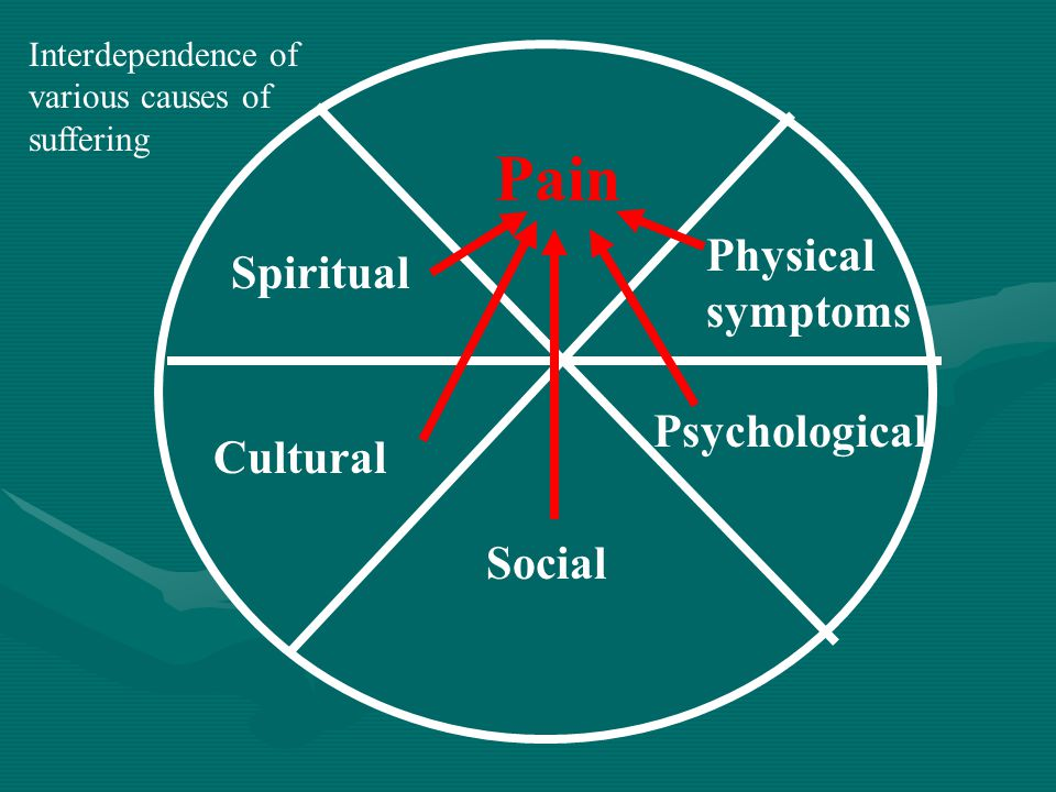 Pain Physical symptoms Psychological Social Cultural Spiritual Interdependence of various causes of suffering