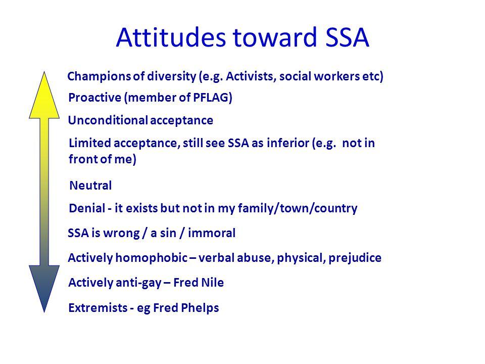 Attitudes toward SSA Champions of diversity (e.g.