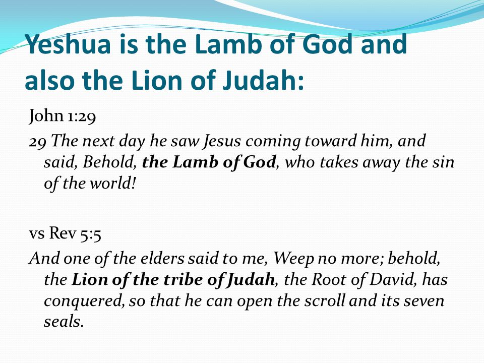 Yeshua is the Lamb of God and also the Lion of Judah: John 1:29 29 The next day he saw Jesus coming toward him, and said, Behold, the Lamb of God, who takes away the sin of the world.