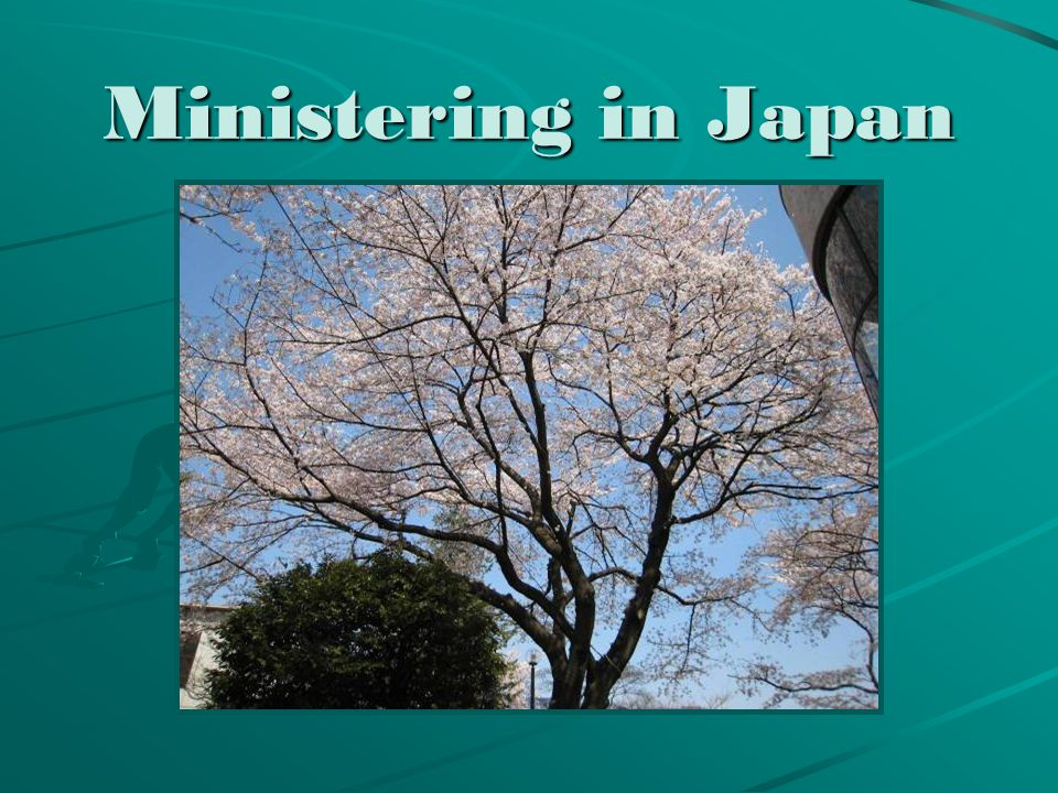 TCK education (Third Culture Kids) OMF's work in Japan is mainly church planting