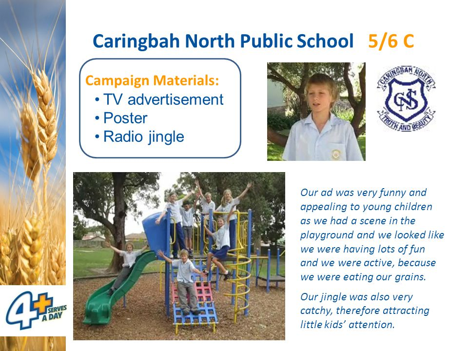 Caringbah North Public School 5/6 C Campaign Materials: TV advertisement Poster Radio jingle Our ad was very funny and appealing to young children as