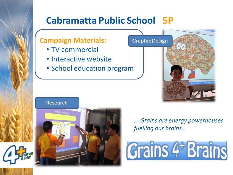 Campaign Materials: TV commercial Interactive website School education program Cabramatta Public School 5P Research Graphic Design...