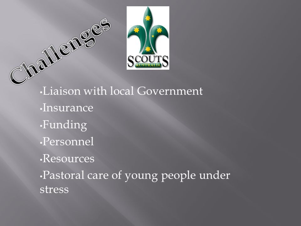 Liaison with local Government Insurance Funding Personnel Resources Pastoral care of young people under stress
