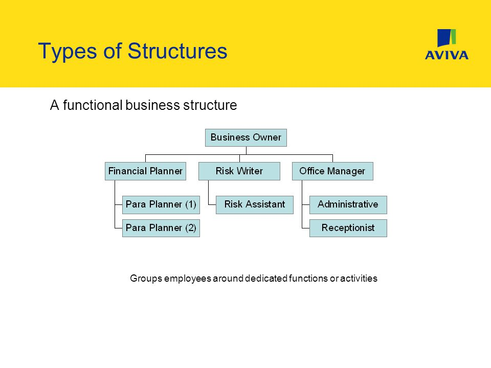 A functional business structure Groups employees around dedicated functions or activities Types of Structures